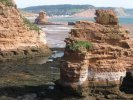 Holiday cottages and accommodation around Ladram Bay Sea Stacks