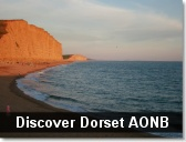 Dorset AONB Visitor & Tourist Guide